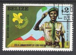 Belize Y/T 593 (0) - Belize (1973-...)