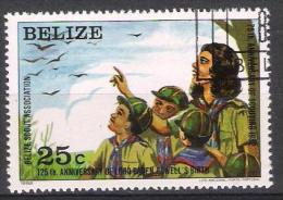 Belize Y/T 589 (0) - Belize (1973-...)