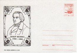 SLOVENIA 1993 8.00 T.  Commemorative Postal Stationery Envelope On Grey Paper, Unused.  Michel U4a - Slovenia