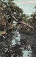 C1900 SHADOW RIVER LAKE ROUSSEAU MUSKOKA LAKES - Non Classés