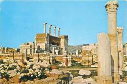 CPM - EPHESUS - San Jan Bzailikas - Turkey