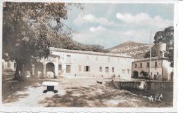 QUISSAC - Colonie De Vacances De Fonsanges - Quissac