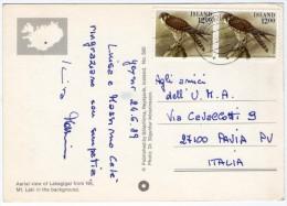 ICELAND - AERIAL VIEW OF LAKAGIGAR / THEMATIC STAMPS-BIRD (FALCO COLUMBARIUS) - Islanda