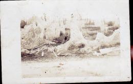 AMICHE 1909   CP PHOTO