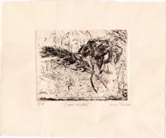 """Lithographie De Miréio Traverso Intitulée """" DANSE ORIENTALE""""  N° 2/30 - Lithographies"""
