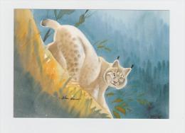 """Cpm - Aquarelle D'Alexis Nouailhat """" Le Lynx """" - - Autres"""