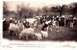 VANNES -  Renneveux,, La Fête Des Boudins, Visite Au Bétail ... - CPA  Petits Défaut D'angle Sinon Bon Etat - Vannes