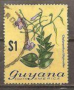Guyana. Scott # 145 Used. Flowers 1973 - Guyana (1966-...)