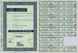 Sté Des Briqueteries Oranaises SABO-ALGERIE - Mines