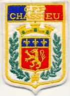 POLICE - CFP CHASSIEU - Police & Gendarmerie