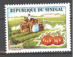 Senegal: Yvert N°435**; MNH; Tomate; Agriculture; - Sénégal (1960-...)