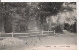 DERVAL 2 (L I)  L'AVENUE DE BOSCHET 1933 - Derval