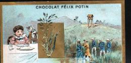 CHROMO FELIX POTIN - LE RIZ - Félix Potin