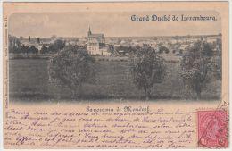 20174g MONDORF - Champs De Culture - Panorama - 1899 - Ambulant - Mondorf-les-Bains