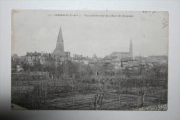 49 : Chemillé - Vue Générale Prise De La Route De Beaupréau - Chemille