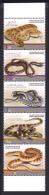 United Arab Emirates 2012 ( Desert Snakes In The U.A.E. ) - Complete Set - MNH (**) - United Arab Emirates