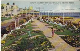 - Angleterre - Esplanade From Concert Pavillon, Bognor Regis  - - Bognor Regis