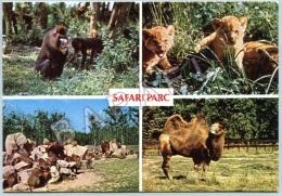 Peaugres (07) - Safari Parc Du Haut Vivarais - Quelques Spécimens Du Zoo - Animaux & Faune