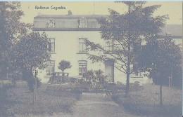 COGNELÈE - BELLEVUE - Belgique