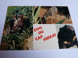 ZOO DU CAP FERRAT.SAINT JEAN CAP FERRAT. - Saint-Jean-Cap-Ferrat