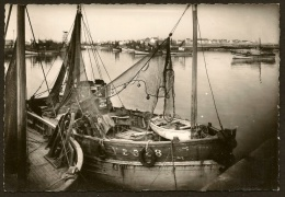 LE GUILVINEC Bateaux Dans Le Fond Du Port (Jos) Finistère (29) - Guilvinec