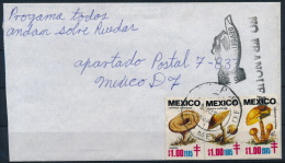 Mexico Mexiko Cover With Charity Stamps NO FRANQUEADA Backside DEVUELVE Mushrooms Pilze °BL1042 - Pilze