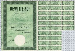 Dewitte Et Cie à Lomme Lez Lille, K De 1 050 000 Frs - Chemin De Fer & Tramway