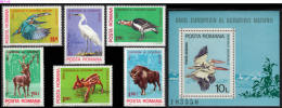 ROMANIA, 1980, European Nature Protection, Birds, Deer, Bison, Pelicans, Set Of 6+ Souvenir Sheet, MNH (**), LPMP 1004-5 - Pelikanen