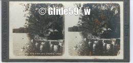 Collection Photo-Stéréo - LYON - Parc Tête D'Or - Les Cygnes - N° 670 (sur Support Carton 1 Mm) - Stereoscopische Kaarten