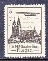 GERMANY  AEROPHILATELIC  VIGNETTE  SAALER-BERG  FLIEGER  GLIDER   * - Airmail