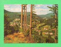 CPM  ALLEMAGNE  -  BAD HERRENALB  -  7506  Heilklimatischer Kurort Herrenalb - Bad Herrenalb