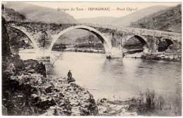 Ispagnac - Pont Ogival - France
