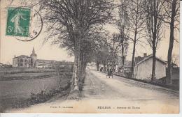 LANDES - MEILHAN - Avenue De Tartas - Autres Communes
