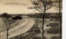 22-TREBEURDEN-La Baie De Trozoul à Travers Les Pins Du Castel - Trébeurden