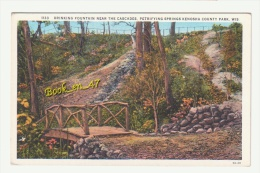 {35100} USA , Wisconsin , Drinking Fountain Near The Cascades , Petrifying Springs Kenosha County Park - Kenosha