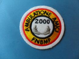 ECUSSON  FEUTRE  BRODE   /  MARCHE / AMBULATIONE AMICI   2000   F.N.B.M.P - Patches