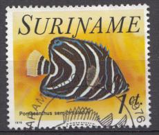 SURINAM Mi.nr: 722 Tropenfische 1976 OBLITÉRÉS-USED-GEBRUIKT - Suriname