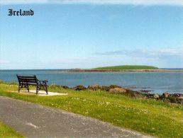 1 AK * Irland * Blick Zur Insel Colt Im County Von Dublin - Non Classificati