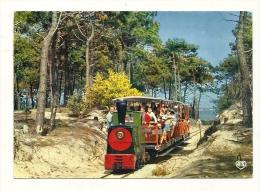 Cp, 17, Ile D'Oléron, Petit Train Touristique De Saint-Trojean Et Genêts En Fleurs, Voyagée 1970 - Ile D'Oléron