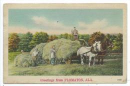 GREETINGS FROM FLOMATON -Alabama -Etats Unis -Charette Chevaux, Récolte Des Foins -Animée - Etats-Unis