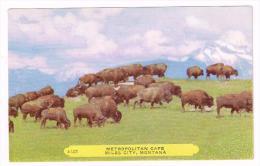 I1505 Montana - Miles City - Metropolitan Cafe / Non Viaggiata - Miles City