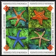 (12) Micronesia / Micronesie  Marine Life / Vie / Meerestiere / Starfish / Seesterne  ** / Mnh  Michel 490-93 - Mikronesien