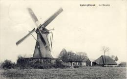 Calmpthout  Kalmthout Le Moulin De Molen - Kalmthout