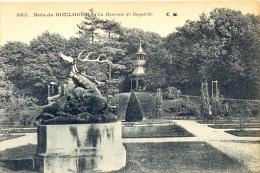 CPA PARIS - BOIS DE BOULOGNE - LA ROSERAIE DE BAGATELLE - Parcs, Jardins