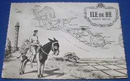 """ILE DE RE (17) : """" CARTE + ÂNE """" CPSM - Ile De Ré"""