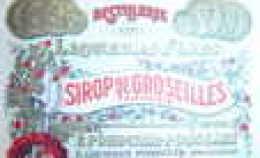 Anc.étiquette  Sirop De Groseille. - Fruits & Vegetables