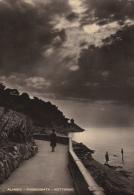 Cartolina ALASSIO (Riviera Dei Fiori / Provincia Di Savona) - Passeggiata A Mare (Notturno) - Italia
