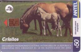 Télecarte D'URUGUAY   $50  Vide Bon état  ** N°62723720 - Uruguay