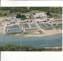 CPM  De  TALMONT  SAINT-HILAIRE  (85)  -  Vue Aérienne Du Port De La Guittière  //  TBE - Talmont Saint Hilaire