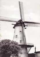DEERLIJK : Molen Van Declercq (1898) - Deerlijk